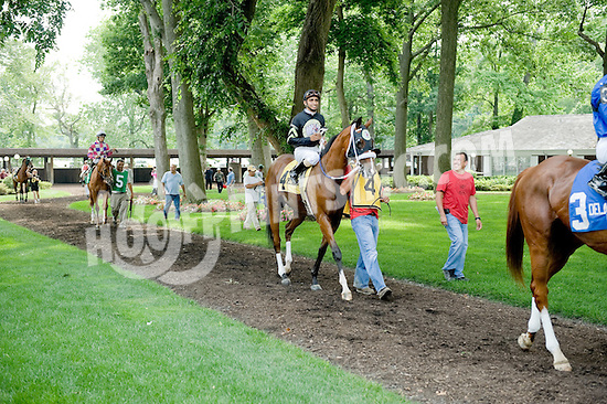 Good General in the paddock before The Joe French Memorial Stakes at Delaware Park on 6/22/11