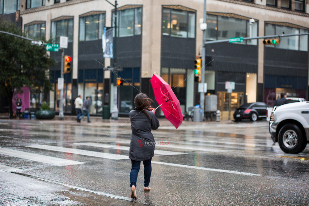 Woman holding umbrella crosses the street at 6th & Congress Avenue, central downtown business district, in the rain, Austin, Texas - Stock Image.