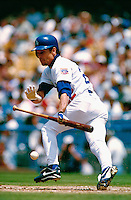 Brett Butler of the Los Angeles Dodgers during a game at Dodger Stadium in Los Angeles, California during the 1997 season.(Larry Goren/Four Seam Images)
