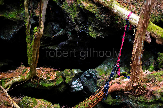 A noose made from neckties hangs from the branch of  a tree in Aokigahara Jukai, better known as the Mt. Fuji suicide forest, which is located at the base of Japan's famed mountain west of Tokyo, Japan.