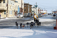 Alan Stevens runs into the finish chute toward the finish line in Nome on Saturday March 21, 2015 during Iditarod 2015.  <br /> <br /> (C) Jeff Schultz/SchultzPhoto.com - ALL RIGHTS RESERVED<br />  DUPLICATION  PROHIBITED  WITHOUT  PERMISSION