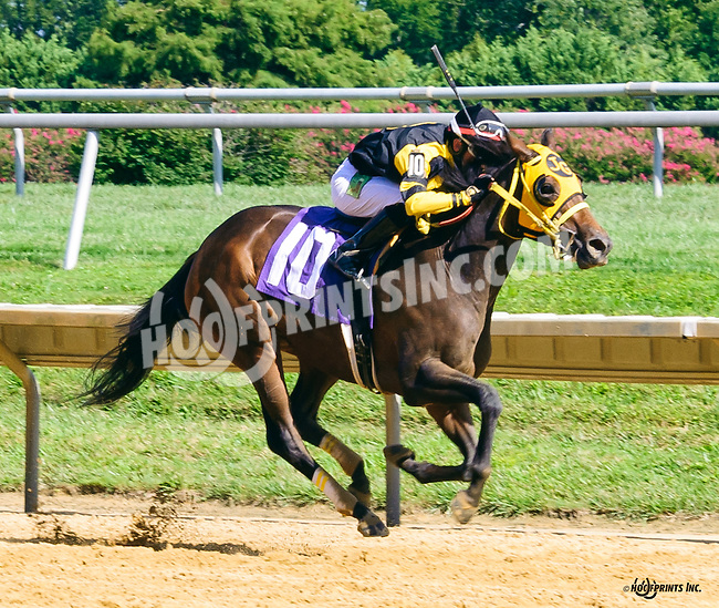 Quasante winning at Delaware Park on 8/22/16