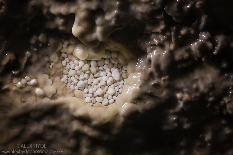Cave Pearls, formed as dripping water rich in calcium salts deposits calcite around a small nucleus (often a sand grain). The constant movement of each cave pearl by the dripping water keeps them rounded, with the calcite accumulating evenly and any irregularities being abraded away. If the dripping water splashed less vigorously, a stalagmite would form instead. Peak District National Park, Derbyhsire, UK. January.