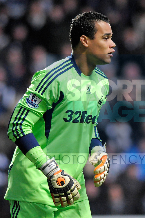 Michel Vorm of Swansea City FC during the Premier League football match between Newcastle United and Swansea City on 17 December 2011, at Sports Direct Arena, Newcastle upon Tyne, England.