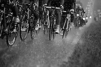 peloton through a thunder storm<br /> <br /> 2014 Tour de France<br /> stage 19: Maubourguet - Bergerac (208km)