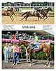 Vindicated winning at Delaware Park on 7/26/14