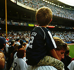 On September 21, 2008 the New York Yankees Major league baseball team played their last home game ever at the original Yankee stadium built in 1923. Next year they will move across the street and play in the new Yankee stadium. It was as many said a Farewell to the House that Ruth built. The fans flooded the area that day wearing their best Yankee jerseys and trying to get autographs and commemorative baseballs. Fans were visibly said at the end of the game. They beat the Baltimore Orioles both Saturday and Sunday. The final home run was hit by New York Yankee Alfred Molina.