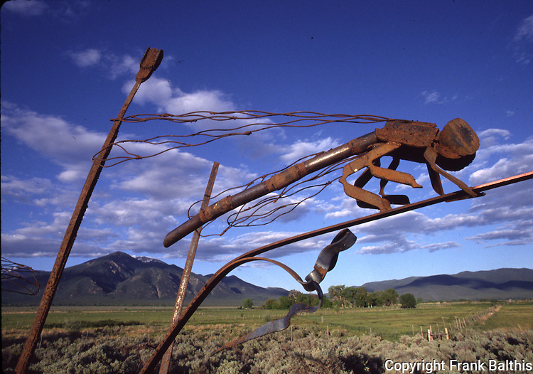 insect sculpture in Taos
