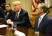 United States President Donald Trump (C) makes remarks as Veteran's Administration Secretary David Shulkin (R) listens during a meeting on Veteran's Affairs in the Cabinet Room of the White House, March 17, 2017, in Washington, DC. Trump's budget proposal requests an increase in spending for the VA.    <br /> Credit: Mike Theiler / Pool via CNP