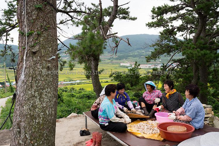 9/11/13 -- Cheongsando Island, Jeonnam Province (Jeollanam-do), South Korea<br /> <br /> Women sing a traditional Arirang song on Cheongsando Island. HERE:  Yoo Kum Ja, Jung Sun Ja. Lee Gwang Ja, Kim Gang Lim, Ha Young Sun, Park Seong Ryup.<br /> <br /> Photograph by Stuart Isett<br /> &copy;2013 Stuart Isett. All rights reserved.