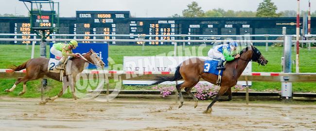 Sister Earth winning at Delaware Park on 10/15/12