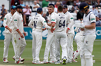 Jamie Porter of Essex celebrates taking the wicket of Adam Lyth (lbw)during Essex CCC vs Yorkshire CCC, Specsavers County Championship Division 1 Cricket at The Cloudfm County Ground on 9th July 2019