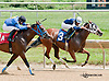 Stormy Monse winning at Delaware Park on 7/27/13
