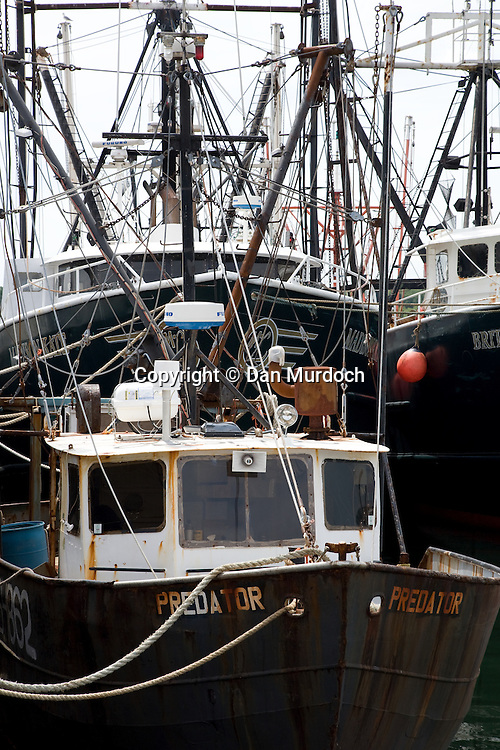 Fishing boats at the dock