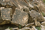 Boulders with abstract and anthropomorphic, ancient rock art of Nevada at Chrismas Tree Pass in the Grapevine Mountains of southern Nevada.