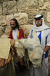 Israel, Jerusalem, two men and a donkey at the Mount of Olives on Palm Sunday
