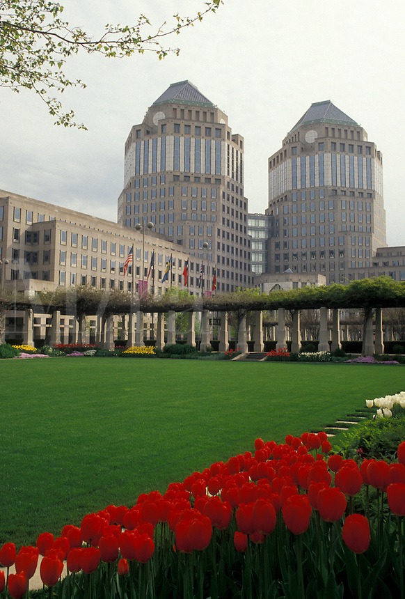AJ4231, Cincinnati, Ohio, View of Proctor Gamble Buildings in downtown Cincinnati from Fountain Square with red tulips in the spring in the state of Ohio.