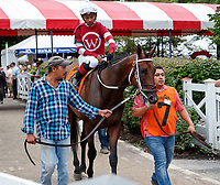 Raging Bull (no. 4) wins the Hall of Fame Stakes (II), Aug. 3, 2018 at the Saratoga Race Course, Saratoga Springs, NY.  Ridden by Joel Rosario and trained by Chad Brown, Raging Bull took the nod in a photo-finish over Maurad (no. 2).  (Photo credit: Bruce Dudek/Eclipse Sportswire)