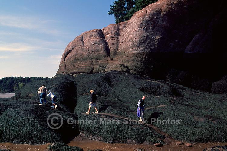 Bay of Fundy Shoreline, St. Martins, NB, New Brunswick, Canada - Sea Caves at Mac's Beach at Low Tide