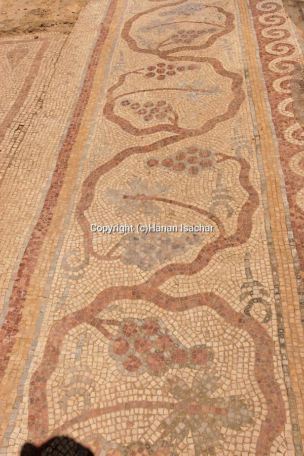 Samaria, Tel Shiloh. A mosaic at the Byzantine Church