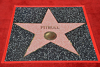 LOS ANGELES, CA. July 15, 2016: Singer Pitbull's star on Hollywood Blvd where Pitbull was honored with the 2,584th star on the Hollywood Walk of Fame.<br /> Picture: Paul Smith / Featureflash