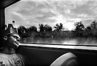- Delta del Danubio, Sfantu Gheorghe Branch. La nave veloce che collega Sfantu Gheorghe a Tulcea è l'unico mezzo di trasporto pubblico passeggeri lungo questo braccio del Danubio. Il viaggio, dura circa tre ore e mezza...- Danube Delta Area, Sfantu Gheorghe Branch. The fast ship from Tulcea to Sfantu Gheorghe. The only quick mean of carrying for passengers along the sfantu Gheorghe branch. The trip, always crowded, takes about three hour and half.