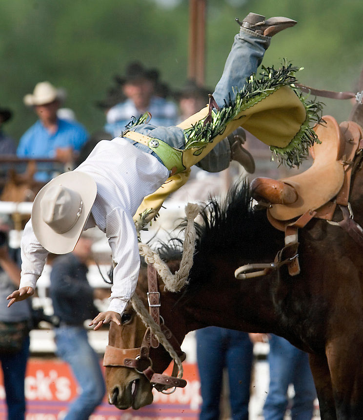 A cowboy is thrown from a saddle bronc during the Miles City Bucking Horse Sale at the Eastern Montana Fairgrounds in Miles City Montana Sat., May 19, 2007. Saddle broncs and bareback broncs are auctioned off after they are bucked.