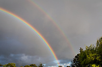 The arc of a double-rainbow dives into the treetops at a neighborhood park along San Francisco Bay.