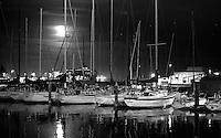 A quieter time in Santa Cruz Harbor.