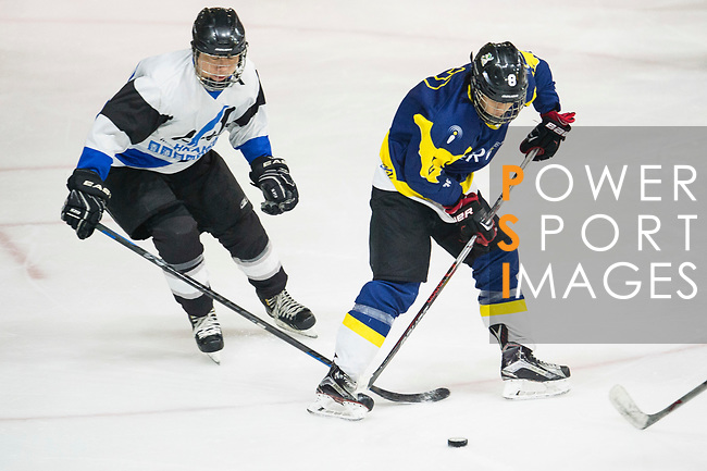 Verity Skater #8 Donald Chow (right) in action during the match Gaggia Empire vs Verity, a match part of the Principal Standard League on 07 March 2017 in Mega Ice, Hong Kong, China. Photo by Marcio Rodrigo Machado / Power Sport Images