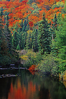 413-43 Baldhead River in Fall, Lake Superior Provincial Park, Ontario, Canada