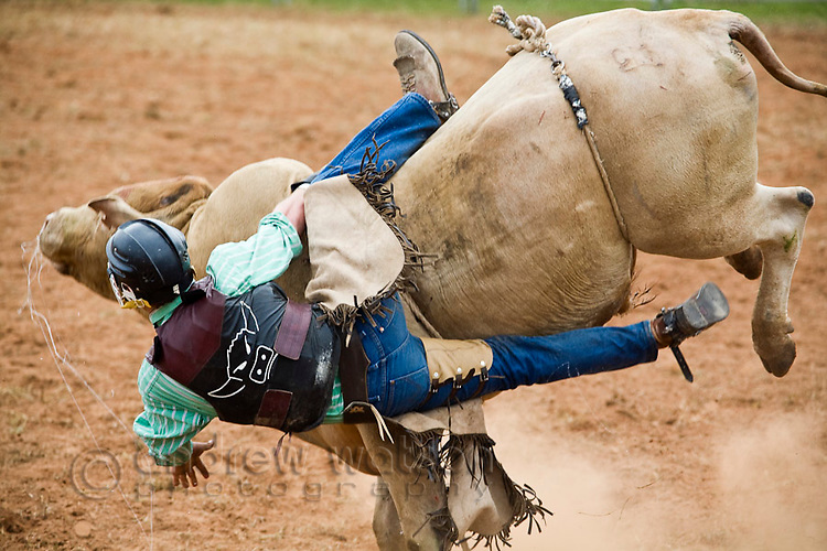 A bull rider is bucked from his bull.  Mt Garnet Rodeo, Mt Garnet, Queensland, Australia