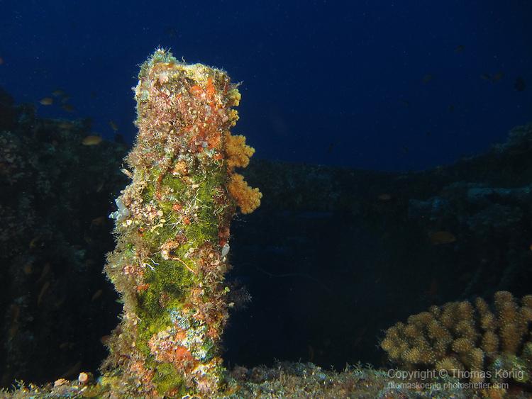 Orchid Island (蘭嶼), Taiwan -- Wreck Dive at Ba Dai Wreck (八代沉船)