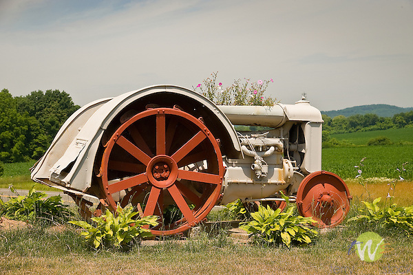 Antique tractor as flower planter
