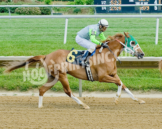 Cayucos running 2nd at Delaware Park on 6/6/12