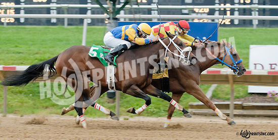 Winning Image winning The Dashing Beauty Stakes at Delaware Park on 6/27/13