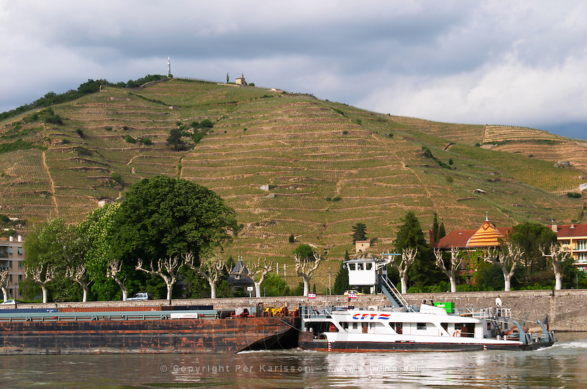 the Hermitage hill  tain l hermitage rhone france