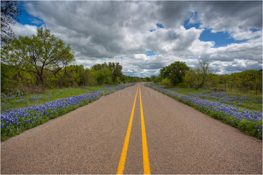 Take a drive in the Springtime Texas hill country and enjoy the bluebonnets and other wildflowers of Texas.