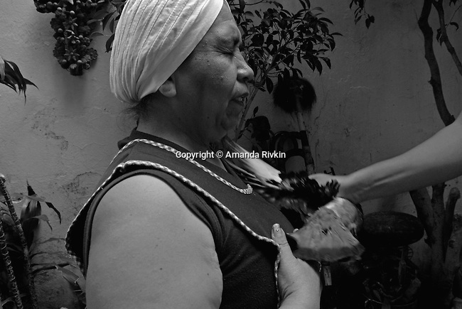 Yoruba faith healer Margarita Velasco Ortega is rubbed with a pigeon as part of a ceremony to bring Alicia Barrera Rosales, 32, great fortune in Velasco Ortega's courtyard in the Agricola Oriente section of Mexico City, Mexico on June 23, 2008.  After all members of the ceremony are rubbed in pigeons, the pigeons head is cut off and then covered in honey.