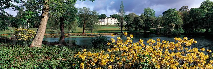 © David Paterson.Spring azaleas in the grounds of Kenwood House, Hampstead Heath, north London...Keywords: spring, flowers, azaleas, park, garden, mansion, Kenwood, Hampstead, heath, London, beauty