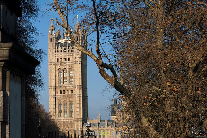 Westminster Palace seen through autumn trees in London, UK
