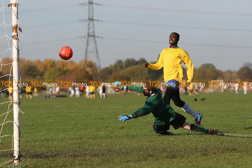 Leyton Manor (white/black) vs Albion Manor - Hackney & Leyton Sunday League Dickie Davies Cup Football at South Marsh, Hackney Marshes, London - 11/11/12 - MANDATORY CREDIT: Gavin Ellis/TGSPHOTO - Self billing applies where appropriate - 0845 094 6026 - contact@tgsphoto.co.uk - NO UNPAID USE.