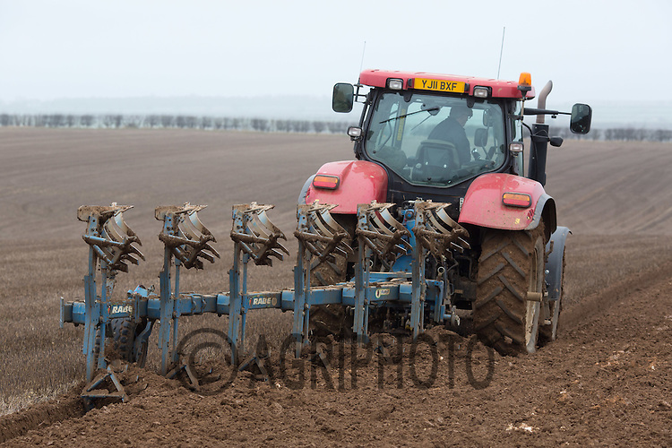 Winter ploughing Barley stubble ready for planting potatoes <br /> Picture Tim Scrivener 07850 303986 tim@agriphoto.com<br /> &hellip;.covering agriculture in the UK&hellip;.