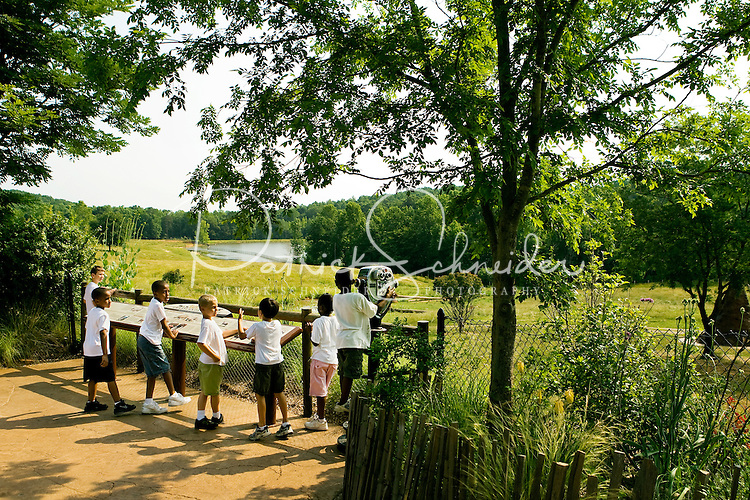 School children on a field trip explore The North Carolina Zoo, located in the town of Asheboro, North Carolina. The North Carolina Zoo, located about 70 miles west of Raleigh and about 90 miles from Charlotte, is one of the largest natural habitat zoos in the United States that allows visitors to walk through its grounds. One of only two state-supported zoos in the country, the NC Zoo was the first American zoo to incorporate the natural habitat philosophy, which presents animals and plants together in exhibits that resemble the natural habits of these creatures in the wild. The North Carolina Zoological Park features animals from Africa and North America. The 1,500-acre  zoo is located atop Purgatory Mountain, which is part of the Uwharrie Mountains in central North Carolina.