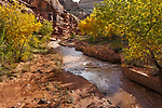 The Fremont River at Capitol Reef National Park, Utah, USA
