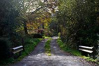Pictured: The lane which leads to the property where a three year old boy died in Llanybydder, west Wales, UK. Tuesday 23 October 2018<br /> Re: A three-year-old boy has died after being hit by a vehicle at a property in Carmarthenshire, Wales, UK.<br /> Dyfed-Powys Police are investigating the incident near Llanybydder on Sunday.<br /> The child, named locally as Evan Williams, died at the scene and the family are being supported by specially trained officers.
