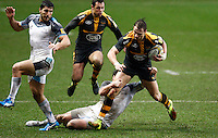 Wasps v Falcons 20160206
