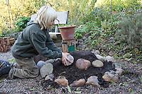 Kind, Junge baut sich eine Kräuterspirale im Garten, Kräuterbeet, Beet, Kinderbeet, Gartenkräuter, Kräuter
