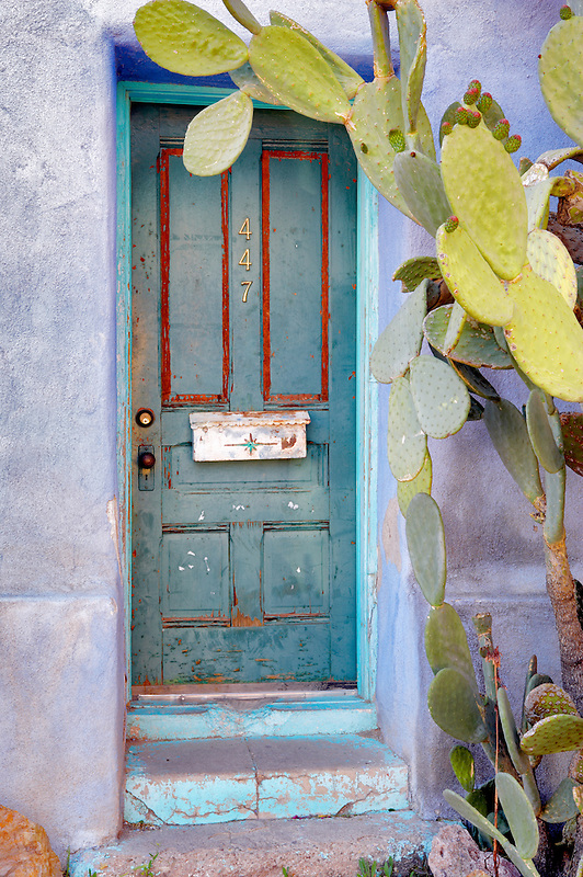 Old door with cactus plant. Tucson. Arizona