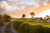 NEW ZEALAND, West Coast, Sunset over Gentle Annie Campground,  Ben M Thomas